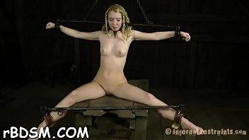 whip gay flog Animal extrem net