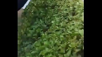 la morritas rosarito en de primaria Lsu monica laforge porn video